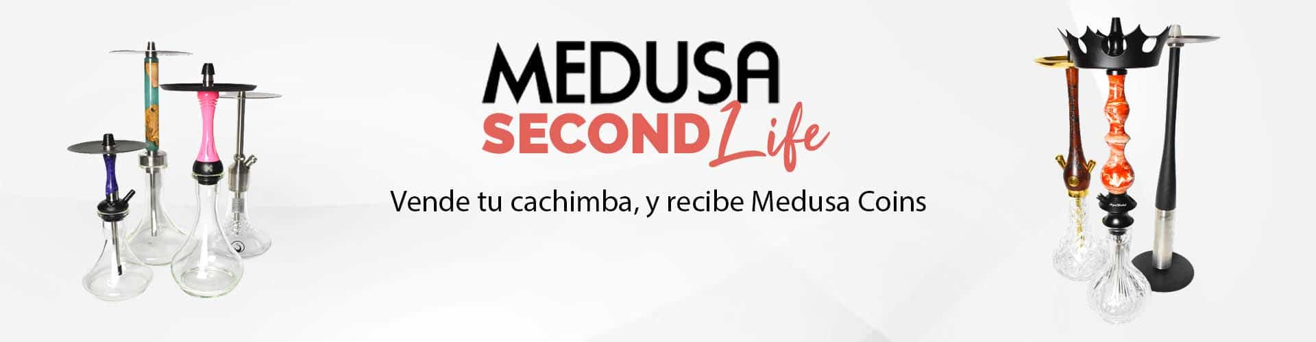 second life banner w